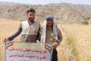 حضور مربیان بسیجی طرح جهش تولید در مزارع شهرستان باغملک